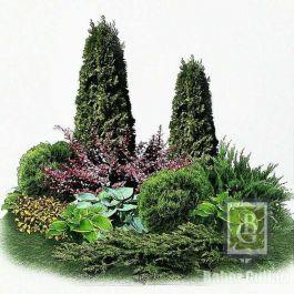 Композиция 6. Декоративный сад