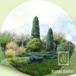 Композиция 7. Садовый рай